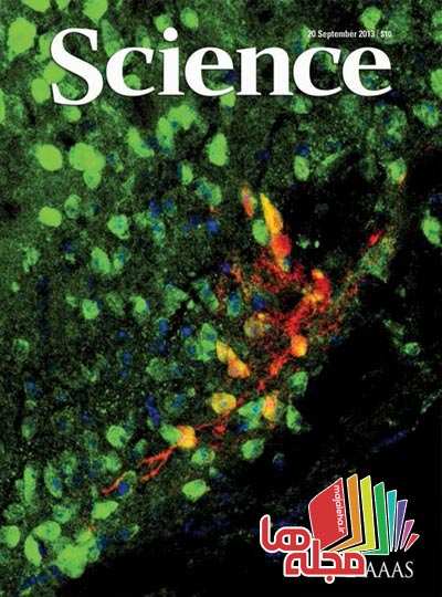 science-2013-10