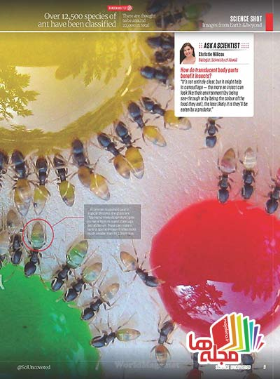 Science-Uncovered-August-2014_Page_009