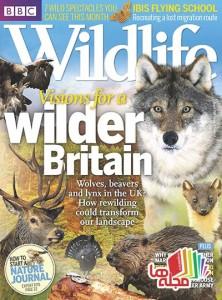 BBC-Wildlife-2014-08