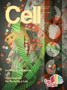 Cell-31-July-2014