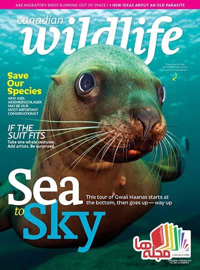 Canadian-Wildlife-2014-09-10