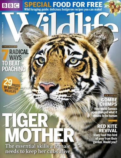 source_bbc_wildlife_october_2014_uk