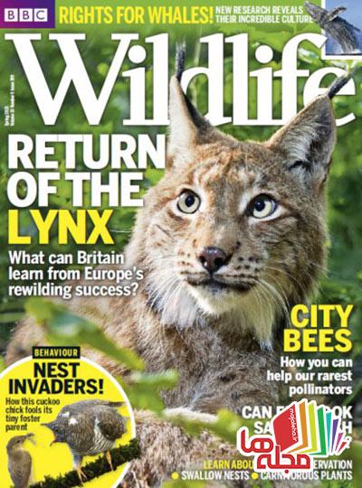 bbc-wildlife-spring-2015
