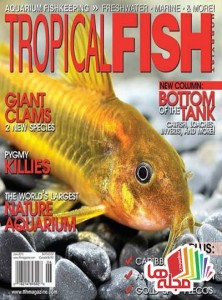 tropical-fish-hobbyist-june-2015