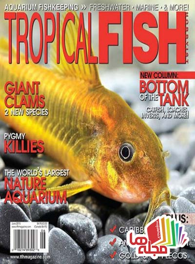 tropical-fish-hobbyist-june-2015