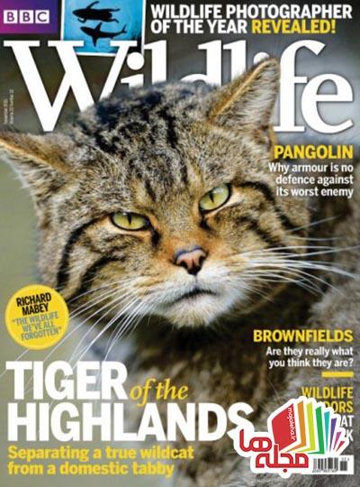 bbc-wildlife-november-2015