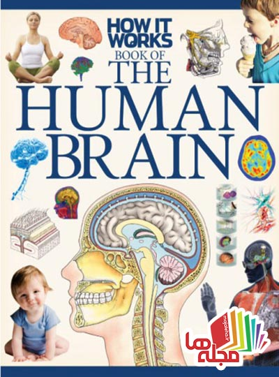 how-it-works-the-human-brain-1st-edition