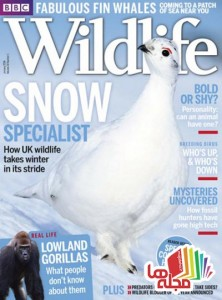 bbc-wildlife-january-2016