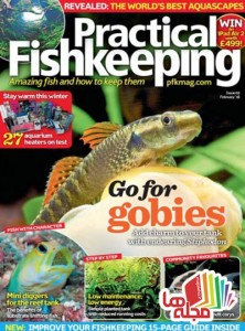 practical-fishkeeping-february-2016