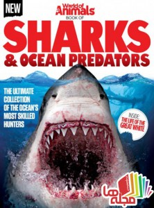 world-of-animals-book-of-sharks-ocean-predators