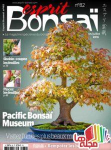 esprit-bonsai-juin-juillet-2016
