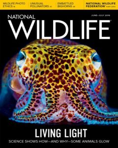national-wildlife-junejuly-2016