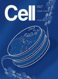 cell-17-november-2016