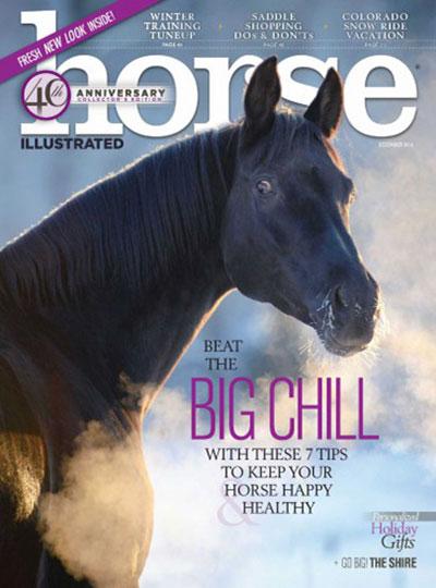 horse-illustrated-december-2016