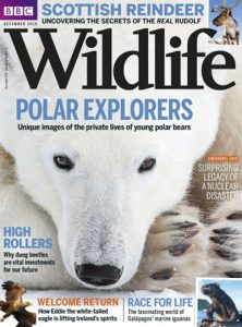 bbc-wildlife-december-2016